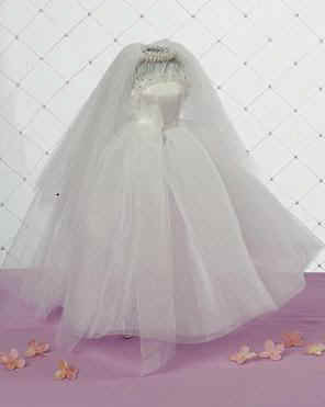 organza-dress-JAM_copy(1).JPG (10040 bytes)