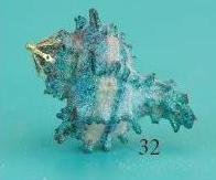 Glitter-Shell-32-Ornament-SD.JPG (5960 bytes)