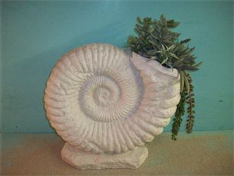 SandNautilusShel16tallx16widex6depth-.jpg (12550 bytes)